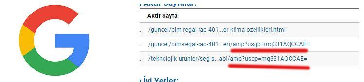 Google Analytics amp?usqp=mq331AQCCAE= şeklinde gelen ziyaretçiler
